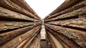 Stock timber wood stock footage