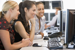 Stock Trader Team At Work Stock Image