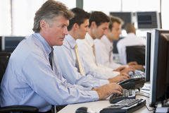 Stock Traders At Work. Concentrating Stock Images