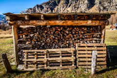 Stock up on firewood Royalty Free Stock Image