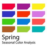 Seasonal color analysis palette for spring type. Type of female appearance. Stock vector color guide. Seasonal color analysis palette for spring type. Type of royalty free illustration