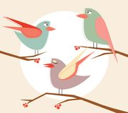 Stock vector cute birds in vector cartoon set. Vector Illustration Royalty Free Stock Photography