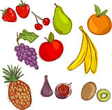 Stock vector fruits  set of vector Royalty Free Stock Image