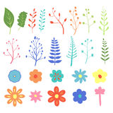 Stock Vector Natural design elements hand-drawn Royalty Free Stock Photo