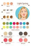 Stock vector seasonal color analysis palette for light spring. Best makeup colors for light spring type of female appearance. Face of young woman vector illustration