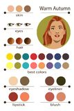Stock vector seasonal color analysis palette for warm autumn. Best makeup colors for warm autumn type of female appearance. Stock Photo