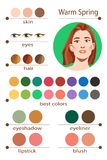 Stock vector seasonal color analysis palette for warm spring. Best makeup colors for warm spring type of female appearance. Stock Photos