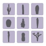 Stock vector set of cactus icons. EPS 8 Royalty Free Stock Image