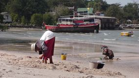 Stock Video Footage Women Are Dug Out Of The Sand Shells, Folk Craft, Thailand Fisherman stock footage