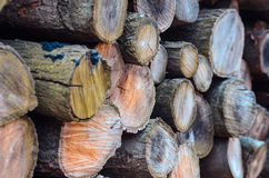 Stock of woodpile seen from 45 degree angle Royalty Free Stock Photo