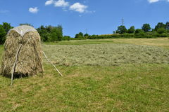 Stocked hay on the meadow Royalty Free Stock Images