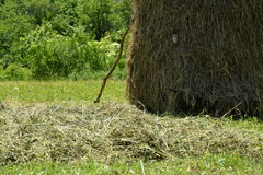 Stocked hay on the meadow Royalty Free Stock Photography