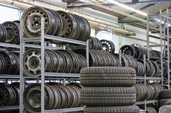 Stocked tires. Lot of tires in garage Stock Photos