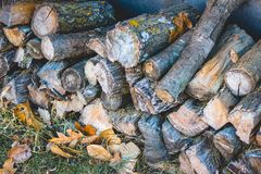 Stocked up for winter warmth. Stack of firewood surrounded by colorful fall leaves - ready to keep you warm for the winter Royalty Free Stock Photography