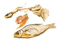 Stockfisch, Haut und Skelett lizenzfreie stockfotografie