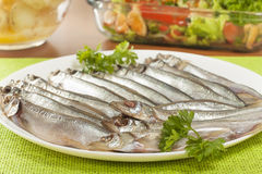 Stockfish capelin on a plate Stock Photography
