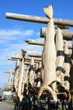 Stockfish contro il cielo di lofoten Fotografie Stock Libere da Diritti