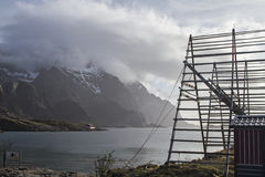 Stockfish racks in Lofoten Royalty Free Stock Images
