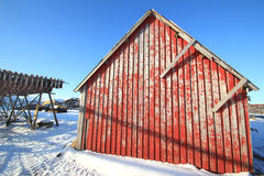 Stockfish and red cabin at sunset Royalty Free Stock Photo