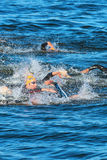 STOCKHOLM - AUG, 25: The chaotic start in the mens swimming in t Royalty Free Stock Photos