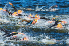 STOCKHOLM - AUG, 25: The chaotic start in the mens swimming in t Royalty Free Stock Images