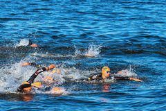 STOCKHOLM - AUG, 25: The chaotic start in the mens swimming with Royalty Free Stock Image