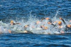 STOCKHOLM - 25 AUGUSTUS: Het chaotische begin in het zwemmen van de mensen met Royalty-vrije Stock Afbeelding