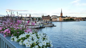 Stockholm city at summer stock video