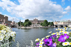 Stockholm in den Blumen Stockbild