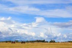Stockholm-Metro Lizenzfreies Stockbild