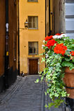Stockholm Old Town Stock Photography