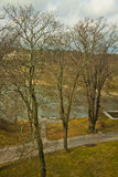 Stockholm, panoramic view of oak forest with sea Royalty Free Stock Photography