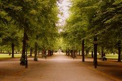 Stockholm park Stock Image