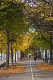 Stockholm-Park am Morgen mit Leuten Lizenzfreie Stockfotografie