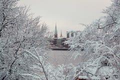 Stockholm-Stadt und zwei Kirchtürme durch gesehen dem Holz auf der anderen Seite, Schweden lizenzfreies stockbild