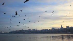 Stockholm, Suède en hiver clips vidéos