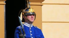 STOCKHOLM - SVERIGE, AUGUSTI 2015: soldat som bevakar drottningholmslotten arkivfilmer