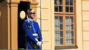 STOCKHOLM - SVERIGE, AUGUSTI 2015: soldat som bevakar drottningholmslotten stock video
