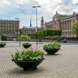 Stockholm/Sverige - Maj 16 2011: Vårblommor i mitten av Stockholm på bakgrunden av en härlig sikt av fotografering för bildbyråer