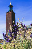 Stockholm, Sweden. View at the Stockholm City Hall through flover decoration, Sweden. Selective focus on flowers in the foreground Stock Photography