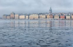 Stockholm waterfront on a foggy winter morning. royalty free stock images