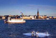 Stockholms city and a boat Stock Photos