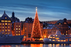 Stockholms old city with christmas tree Stock Photos
