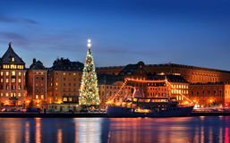 Stockholms old city with christmas tree Stock Images