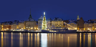 Stockholms old city with christmas tree Stock Image