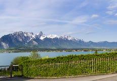 Stockhorn delle alpi di Bernese con il lago Thun che guarda dalla via dentro Fotografie Stock Libere da Diritti