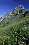 Stockhorn Gipfel Stockfoto