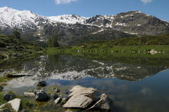 Stockhorn reflected in Leisee lake royalty free stock photography