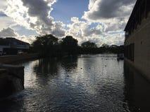 Stockley公园的,米德塞科斯竞技场湖 免版税库存图片