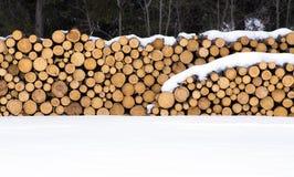 Stockpile of cut logs Stock Photos